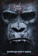 Dawn of the planet of the apes ver3