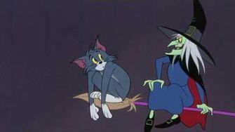 The Witch's Cat Tom & Jerry Cartoon World