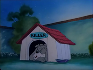 Solid Serenade - Spike (Killer) sleeping