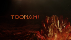 Toonami Logo Vindication Variant