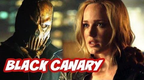 Arrow Season 2 Episode 4 Review - Black Canary and Brother Blood