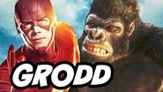 The Flash Season 3 vs Grodd and The Flash of Earth 19 Explained