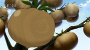 Chocolatomatoes Eps 37