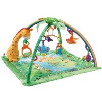 File:Fisher-Price Rainforest Melodies and Lights Deluxe Gym.jpg