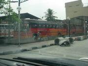 MDL Bus