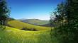 Meadow theme
