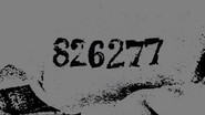826277