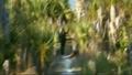 Thumbnail for version as of 00:26, September 1, 2011