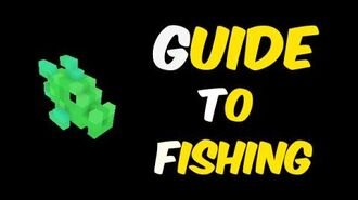 Guide to Fishing