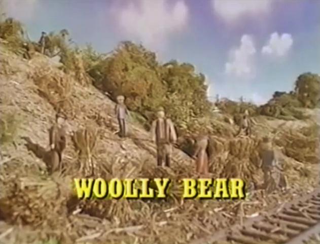 File:WoollyBearUSTitleCard2.png