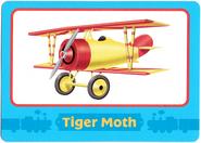 TigerMothTradingCard