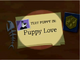 Puppy Love Title Card