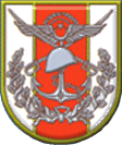 Turkish armed forces insignia
