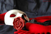 Bloody Mask and Red Rose