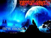 The-Twilight-saga-New-Moon-wallpaper
