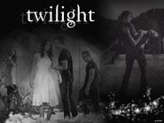 Wallpaper-Twilight-twilight-series-1820864-1024-768