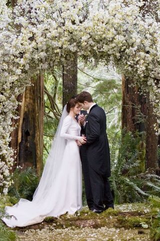 File:Breakingdawnwedding.jpg