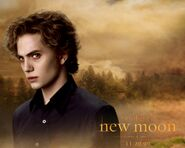 Jasper Hale New Moon Poster