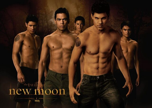 File:New-moon-wolf-pack-wallpaper-jacob-black-1024x730.jpg