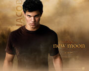 Jacob-Black-New-Moon-twilight-series-7256332-1280-1024