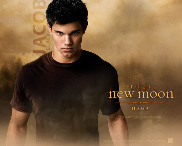 File:Jacob-Black-New-Moon-twilight-series-7256332-1280-1024.jpg