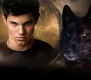 Twilight Saga Wiki