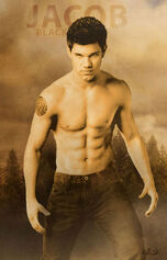Jacob-Black-New-Moon-twilight-serie