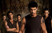 THE-WEREWOLVES-twilight-series-8392804-1920-1200