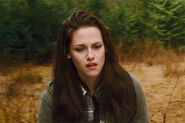 Bella sad new moon