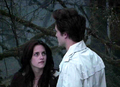 Kristenstewartandrobertpattinson.png