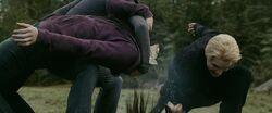 Carlisle kills a newborn