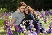 Breaking dawn part-2 6