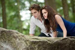 Breaking Dawn essay questions? 10 pts if you give best advice 8)?