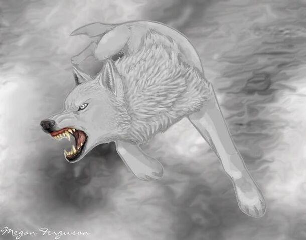 File:White Wolf WIP by KayFedewa1.jpg