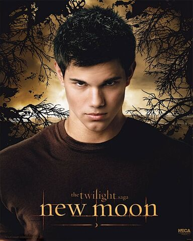 File:Jacob-black-poster-pic.jpg