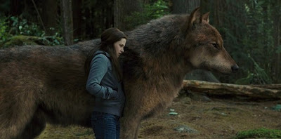Jacob Black Wolf Form Breaking Dawn Part 2 Bella and Jacob in Eclipse