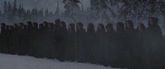 File:Volturi guard.JPG