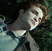 Lossy-page1-220px-Edward Cullen Skin tif