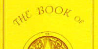 The Book of Amber Runes
