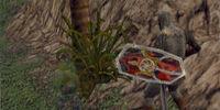 Kiran Shield