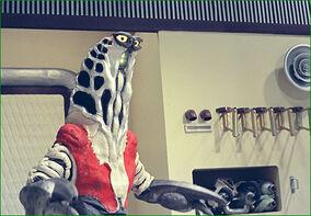 Alien-Godola 4