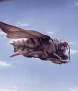 King Zemira Cicada