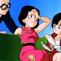 Alas Gohan an' Videl... Me and Goku got divorced....