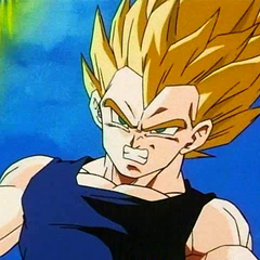SS Vegeta during the fight with Super Buu.