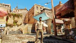 Drake in a Village