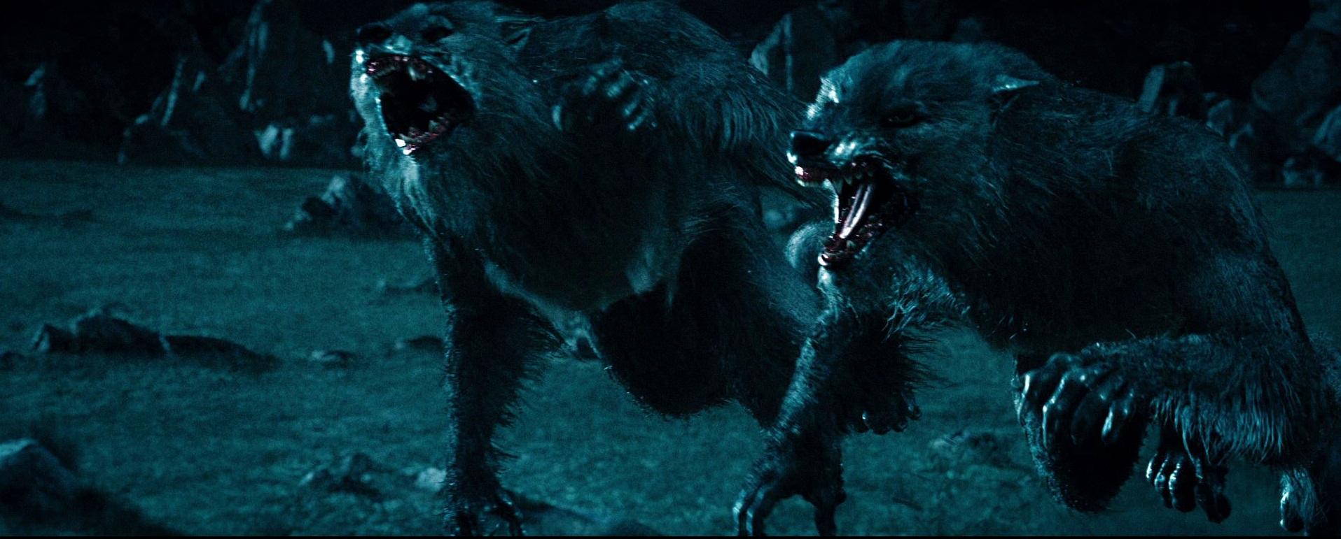Werewolf | Underworld Wiki | FANDOM powered by Wikia