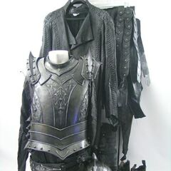 Death Dealer armor seen in <i>Rise of the Lycans</i>.
