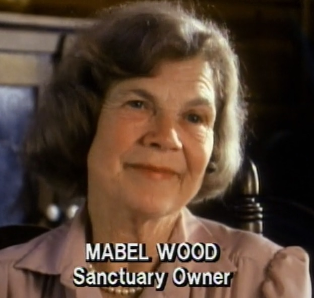 Mabel wood