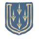 Lt col profile