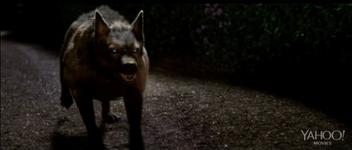 Psi Hound
